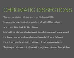 CHROMATIC DISSECTIONS