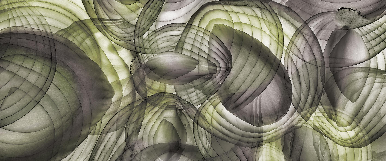 Triptico cebollas