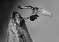 Owl lady.jpg