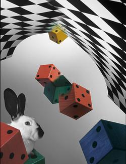 Conejo Alicia  blanco y negro.jpg