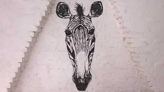 Zebra Wallpaint