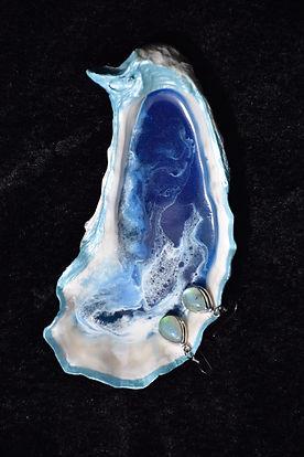 Blue Oyster Shell 02.JPG