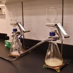 Vacuum filtration setup