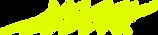 logo domes jaune copie jaune.png
