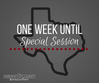 2017 Texas Legislative Special Session Survey