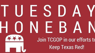 Tuesday Phonebanks!