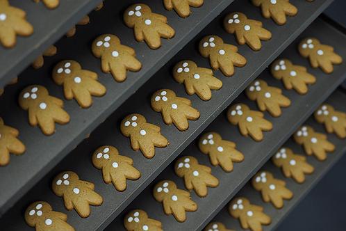 Perryman's Gingerbread Babies