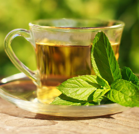 Groene thee als middel tegen de schadelijke effecten van elektromagnetische straling (4G, 5G)