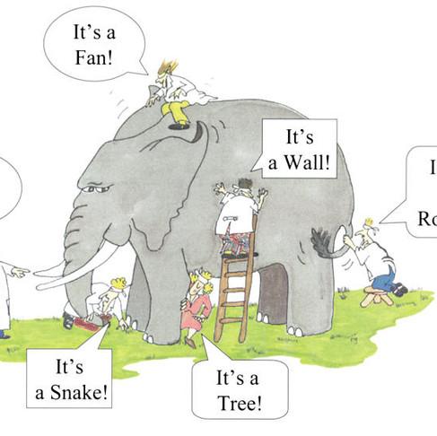 De blinde mannen en de olifant (deel 1)