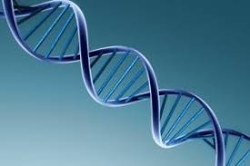 Epigenetica en westerse chronische ziekten (deel 1: Introductie)