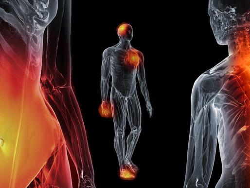 laaggradige ontsteking, het biologische overlevingsmechanisme achter chronische ziektebeelden