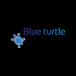 logo-blueturtle-850px