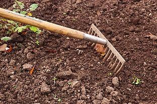Entretien du jardin potager