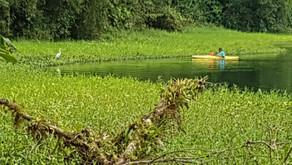 Kayaker sur le cratère d'un ancien volcan devenu lagune émeraude...