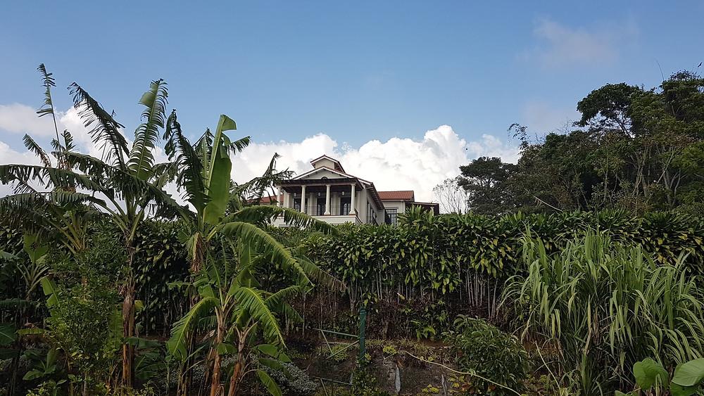 Restaurant du jardin botanique