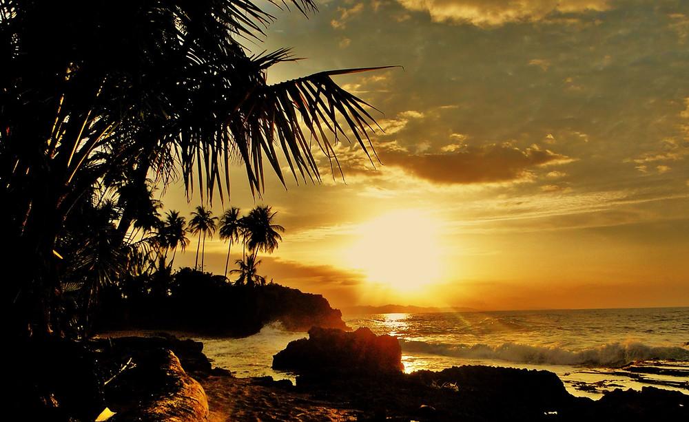 Coucher de soleil sur la plage avec les rochers et les palmiers.