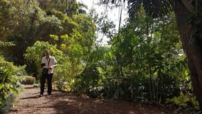 The Ark  Ethno Botanical Garden: un jardin botanique totalement différent des autres !