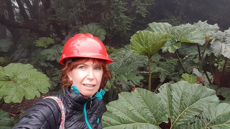 Visite du volcan du Poas