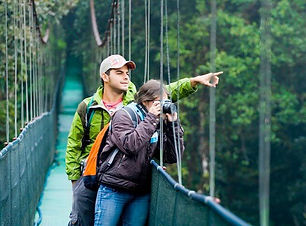 Discover Mistiko Park on Hanging Bridges in tropical forest