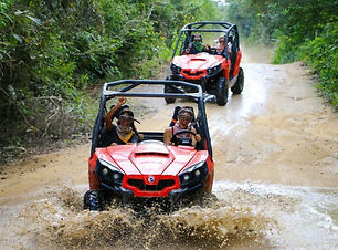 Experience the adventure of an expedition to discover the rainforest aboard 4x4