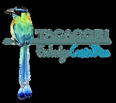 logo_CR_VF_web.png
