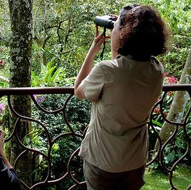 Mujer mirando la naturaleza con prismáticos desde una terraza