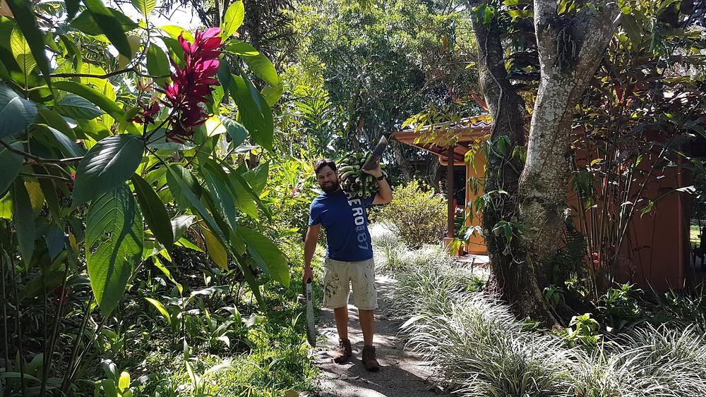 Un employé porte un régime de bananes sur une allée du jardin de l'hôtel TACACORI EcoLodge