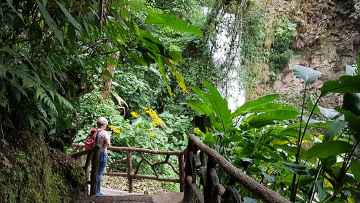 La Paz Waterfalls gardens