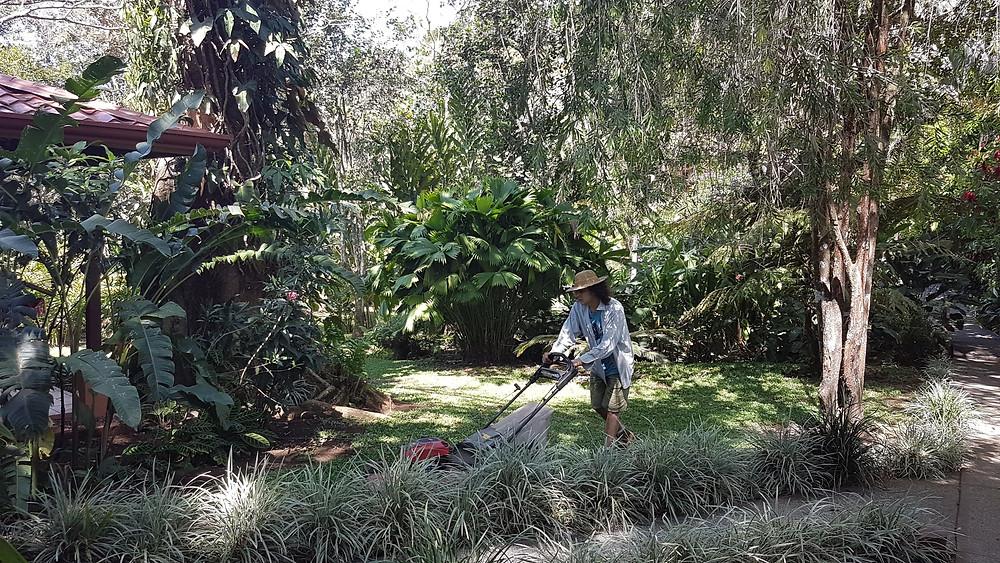 Jardinier tondant la pelouse