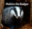 Illuminating Silence with Malvire the Badger