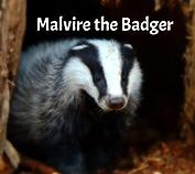 Illuminating Silence with Malvire the Badger