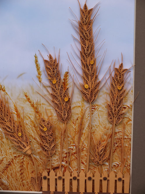 Kernel of Wheat 01