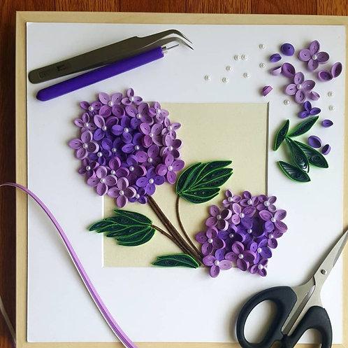 Hydrangea Lavenders