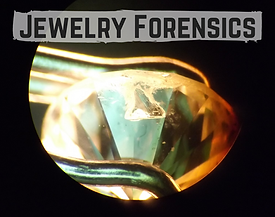 Jewelry Forensics.png