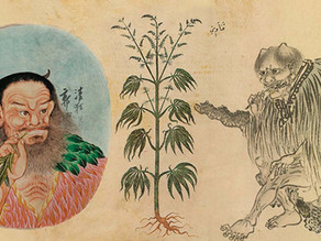 How Human's Have Lived with Cannabis Throughout History