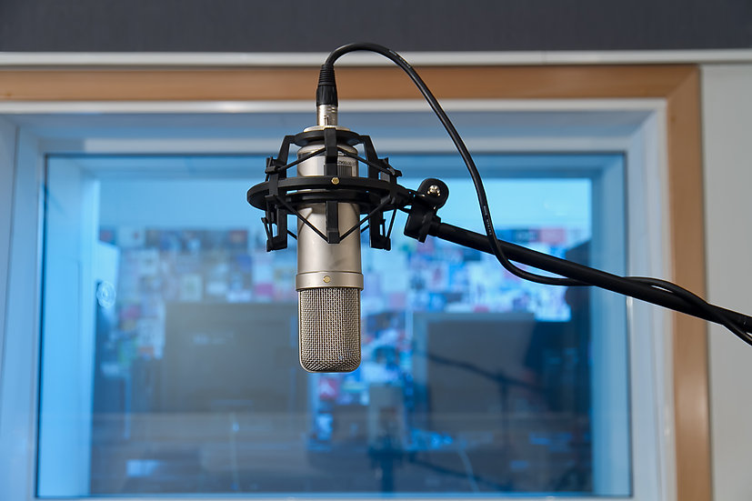 Virtual Voiceover Overview Workshop