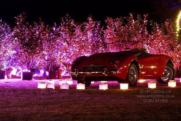 Luxury Wedding Car Lighting