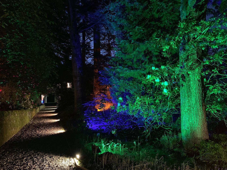 LED Path & Tree Lighting
