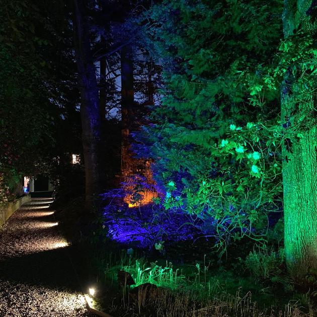 Garden and Path Lighting