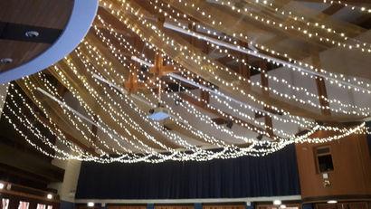 West Park Fairy Light Canopy