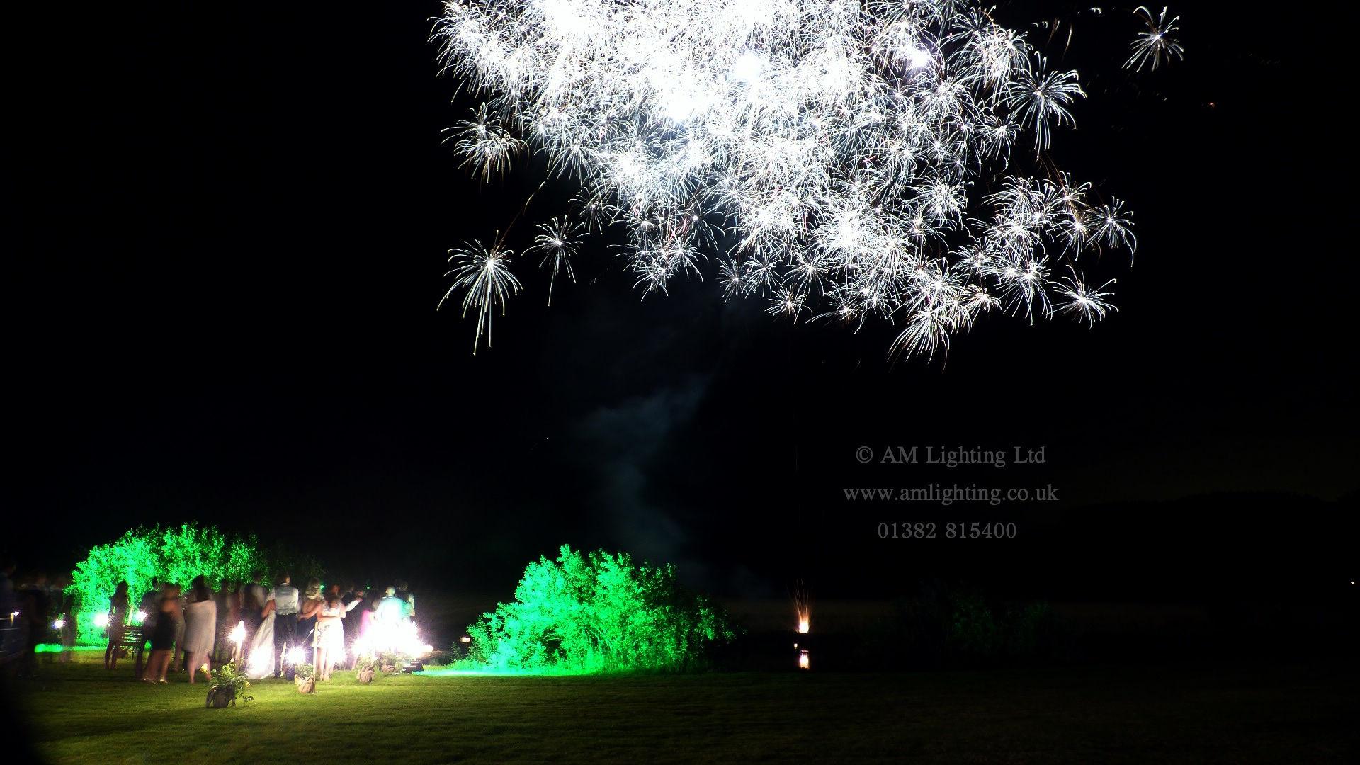 Wedding Sparkles
