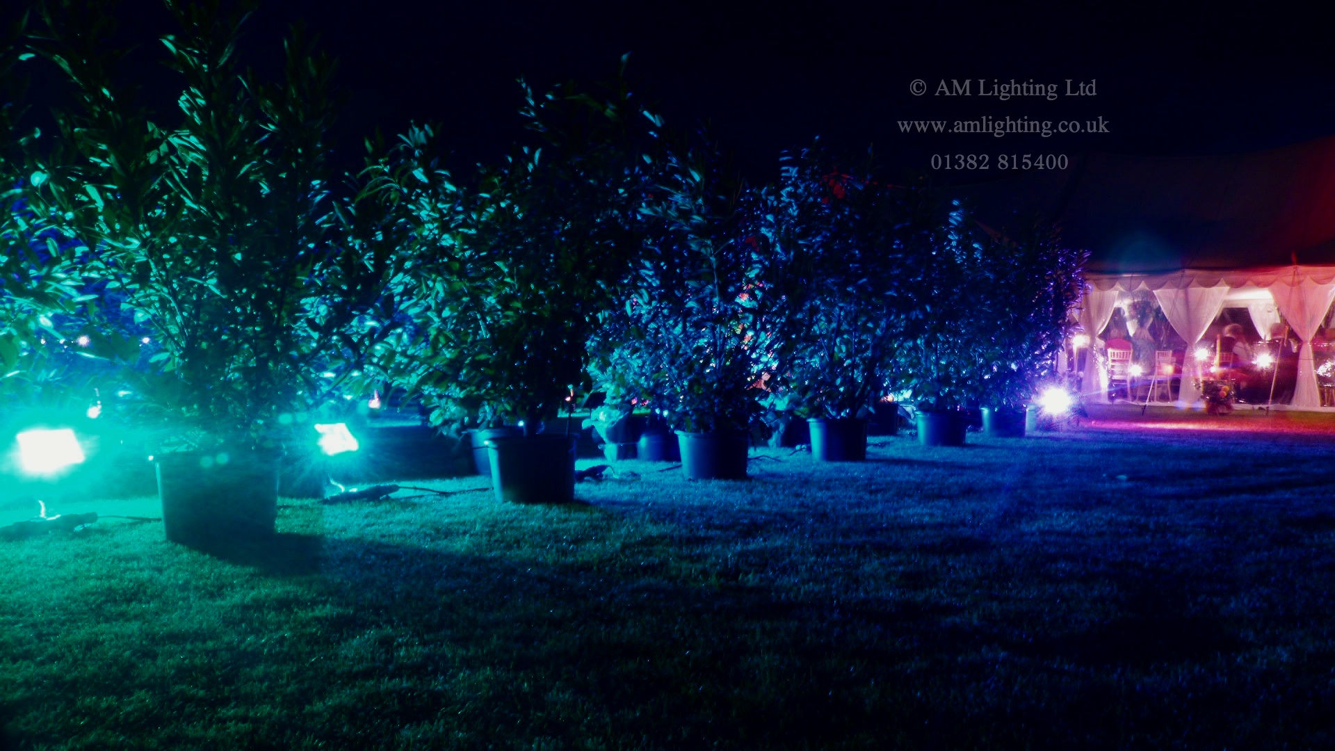 Wedding Marquee Lighting