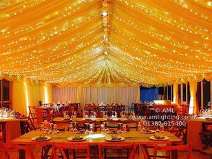 Warm White LED Fairy Light Canopy
