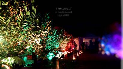 Garden Lighting for Weddings