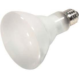 Satco 60br30 Halogen Bulb