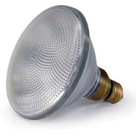 Shat-R-Shield Par Bulb