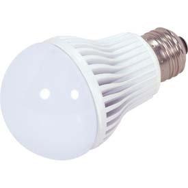 LED A19 Bulb