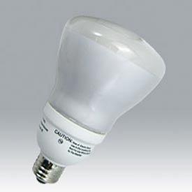 Ushio PAR30 Standard Base CFL Bulb