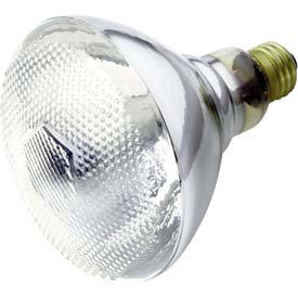 Reflector Flood Incandescent Bulb
