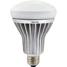 Neptun Induction LED Bulb